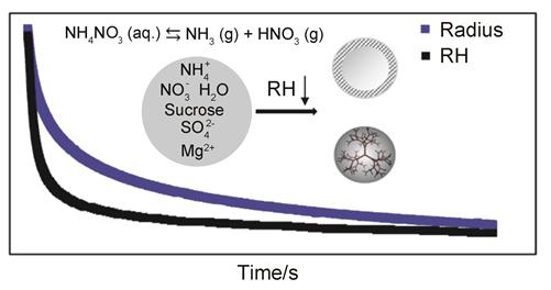 光镊技术研究硝酸铵在超粘气溶胶中的挥发性