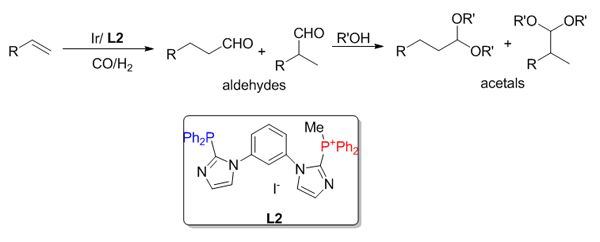 Co-catalysis over bi-functional ligand based Ir-catalyst for tandem hydroformylation-acetalization reaction
