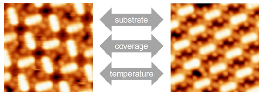 <i>meso</i>-四(对甲氧基苯基)卟啉钴在货币金属单晶表面的吸附与自组装研究