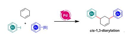 Palladium-Catalyzed Stereoselective 1,3-Diarylation of 1,4-Cyclohexadiene
